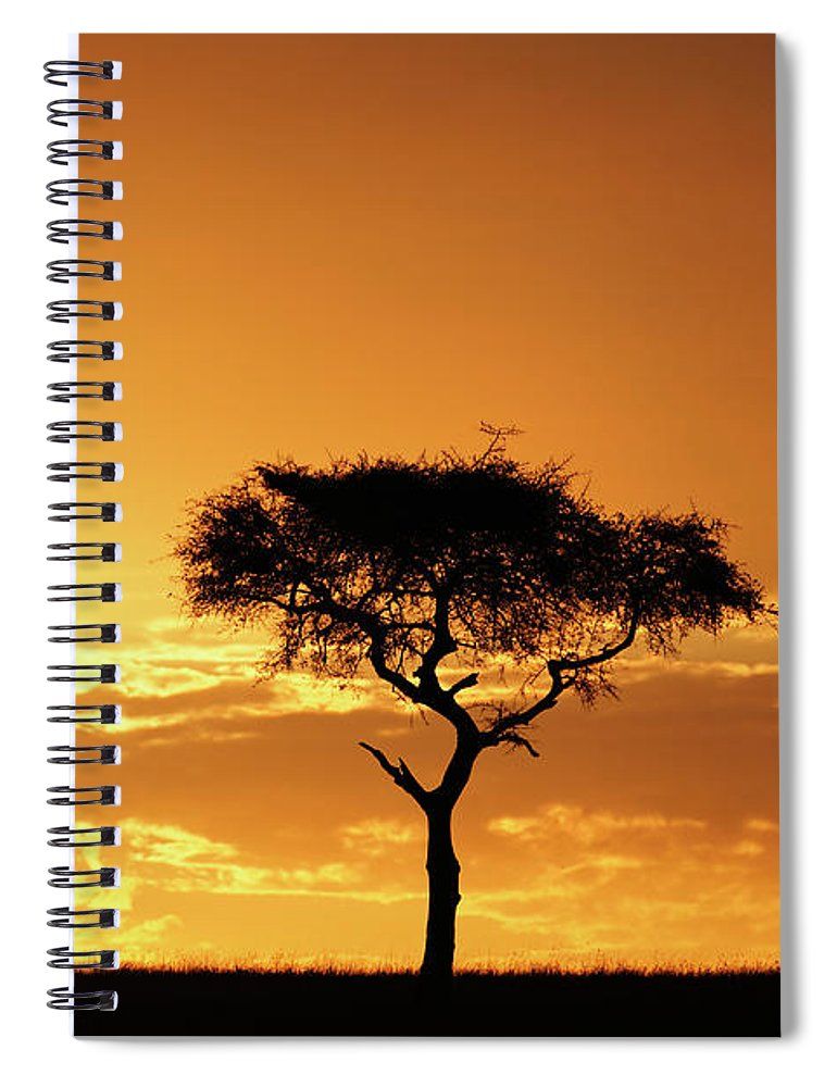 Tranquility Spiral Notebook featuring the photograph Masai Mara National Game Reserve, Kenya by William Manning