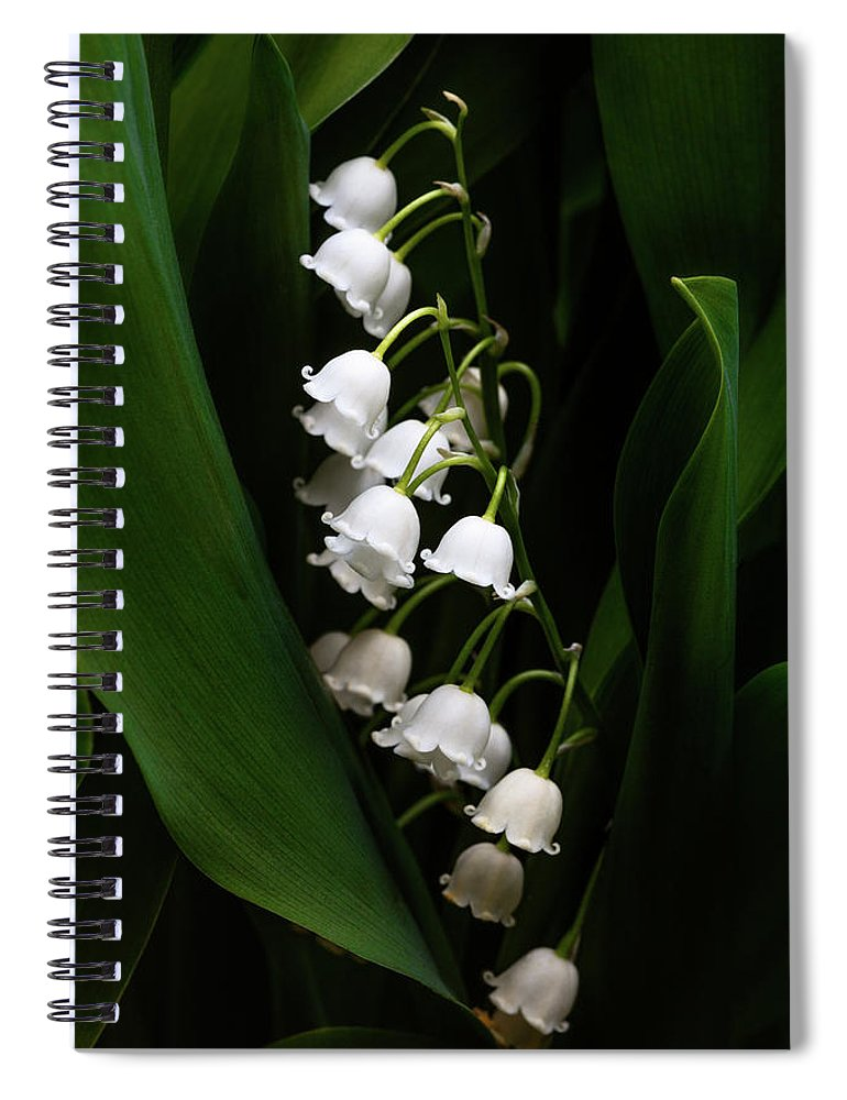 Convallaria Majalis Spiral Notebook featuring the photograph May Lily Aka Lily Of The Valley by Tom Mc Nemar
