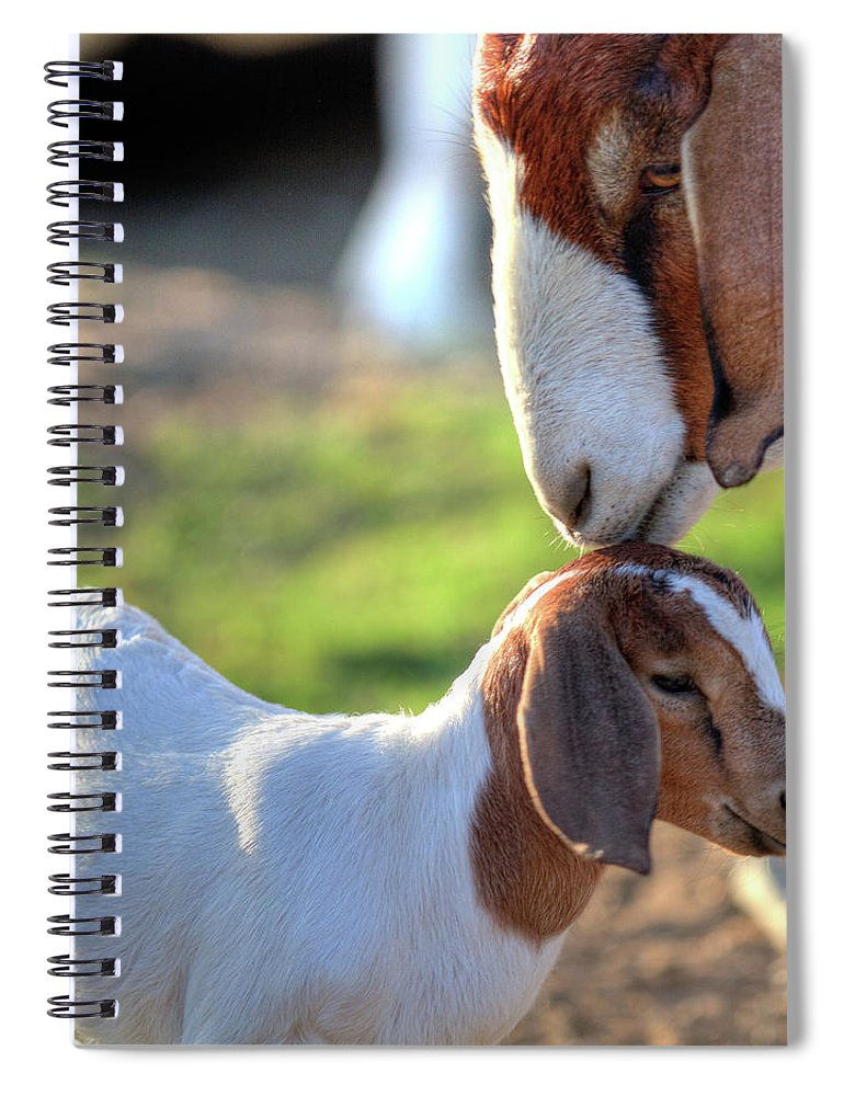Animal Themes Spiral Notebook featuring the photograph Mommy Loves by Tc Morgan Photography