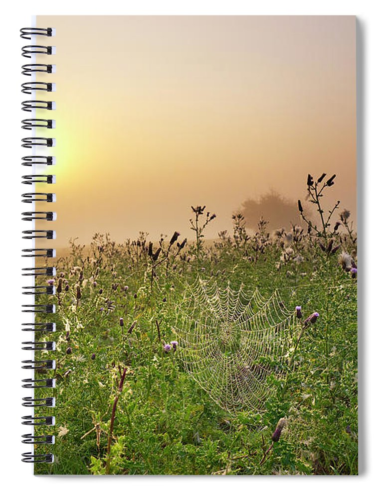 Grass Spiral Notebook featuring the photograph Morning Dew On Spiders Cobweb by Travelpix Ltd