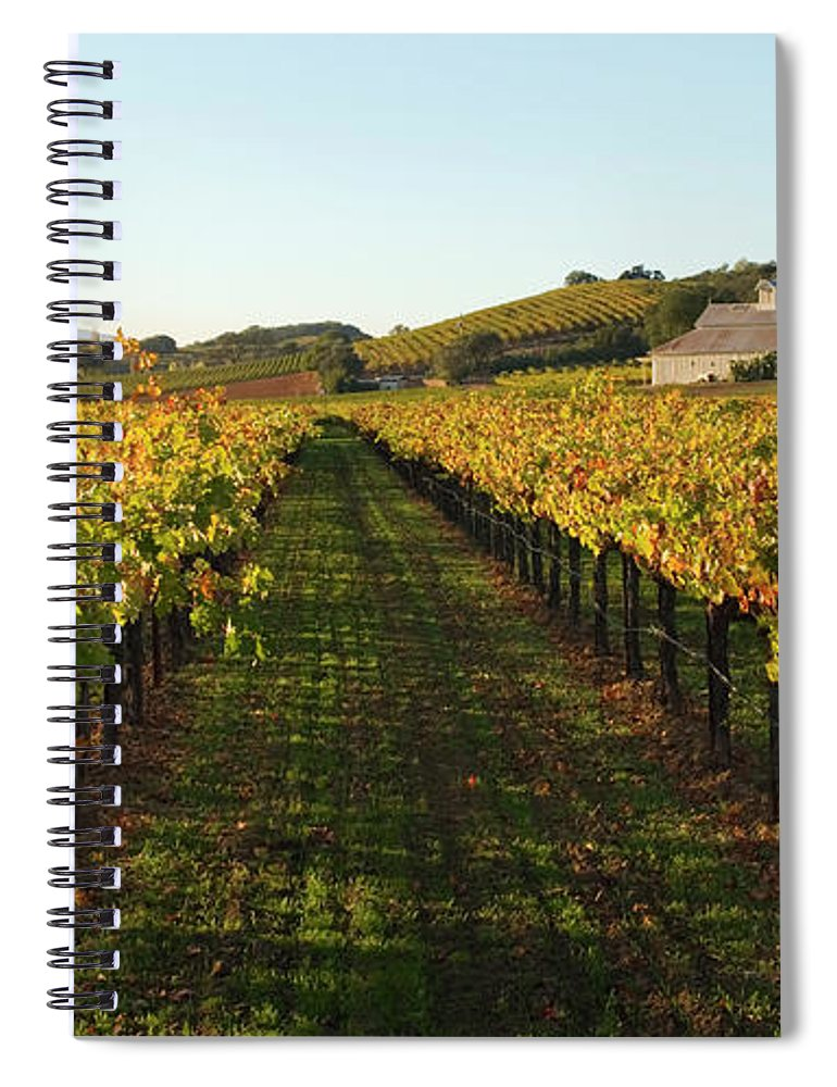 Scenics Spiral Notebook featuring the photograph Napa Valley Vineyard In Autumn by Leezsnow