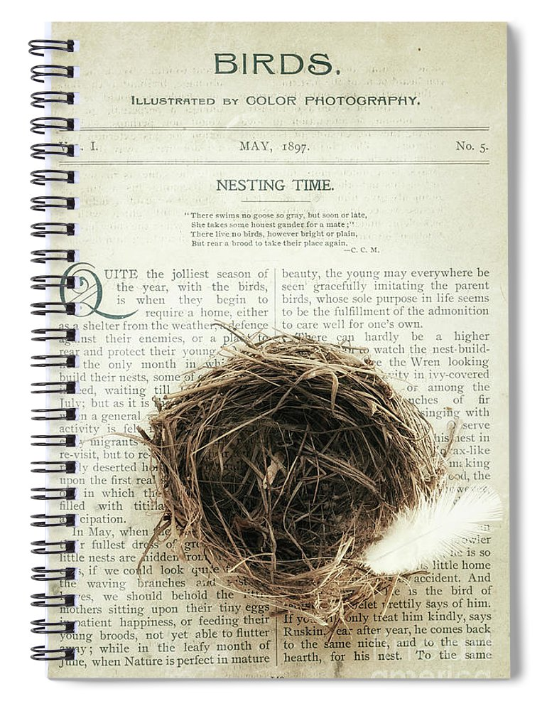 Nest Spiral Notebook featuring the photograph Nesting Time by Alison Sherrow I AgedPage