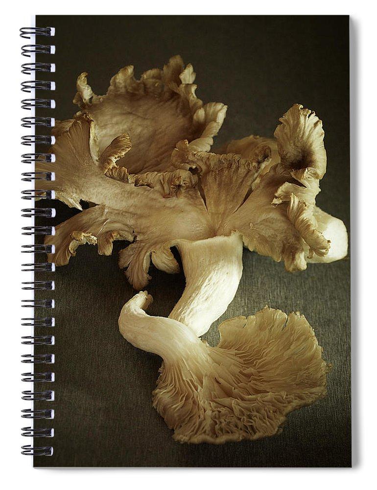 Edible Mushroom Spiral Notebook featuring the photograph Oyster Mushrooms Still Life by Carin Krasner