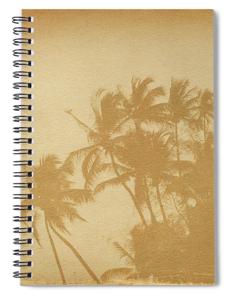 Aging Process Spiral Notebook featuring the photograph Palm Paper by Nic taylor