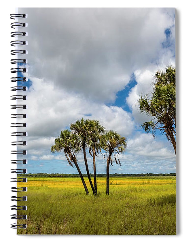 Photography Spiral Notebook featuring the photograph Palm Trees In The Field Of Coreopsis by Panoramic Images