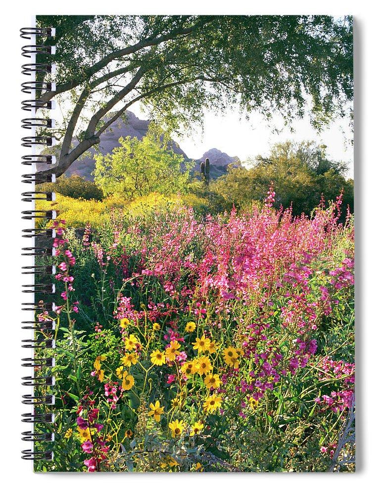 Scenics Spiral Notebook featuring the photograph Phoenix Botanical Gardens by Richard Felber