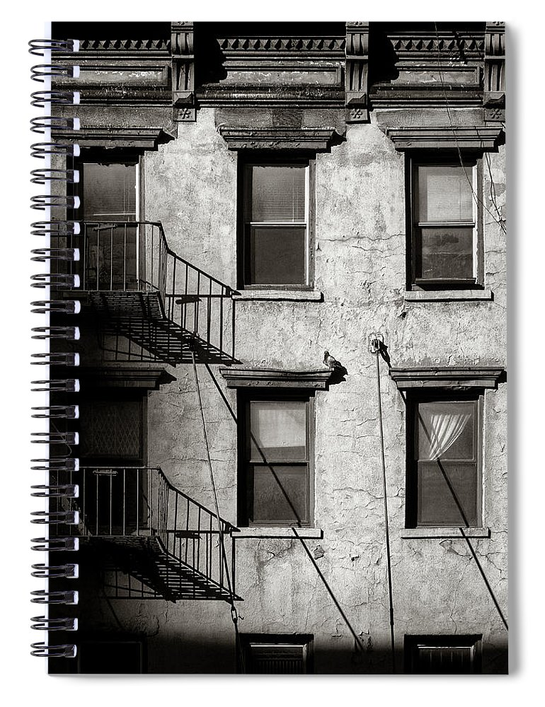 New York Spiral Notebook featuring the photograph Pigeon by Dave Bowman