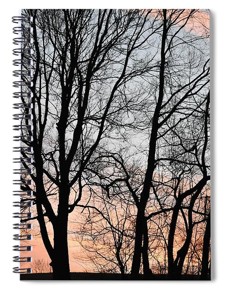 Trees Spiral Notebook featuring the photograph Pink Sky by Cassidy Marshall