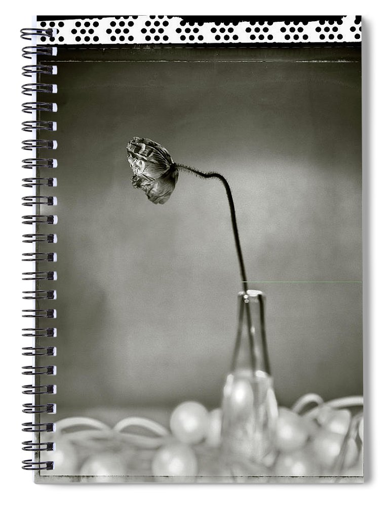 Fragility Spiral Notebook featuring the photograph Poppy - Just Opened by T Scott Carlisle