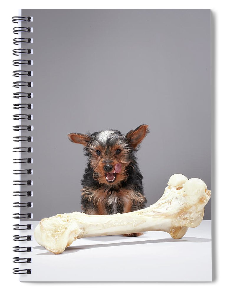 Pets Spiral Notebook featuring the photograph Puppy With Oversized Bone by Martin Poole