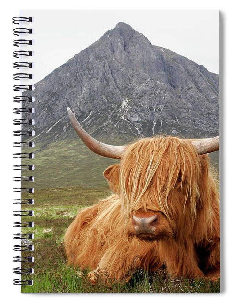 Horned Spiral Notebook featuring the photograph Quintessential Scotland by Thedman