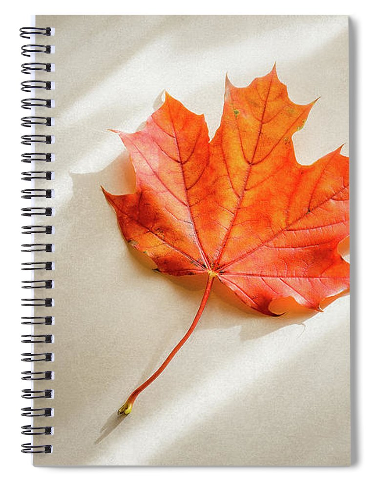 Maple Leaf Spiral Notebook featuring the photograph Red and Orange Maple Leaf by Scott Norris