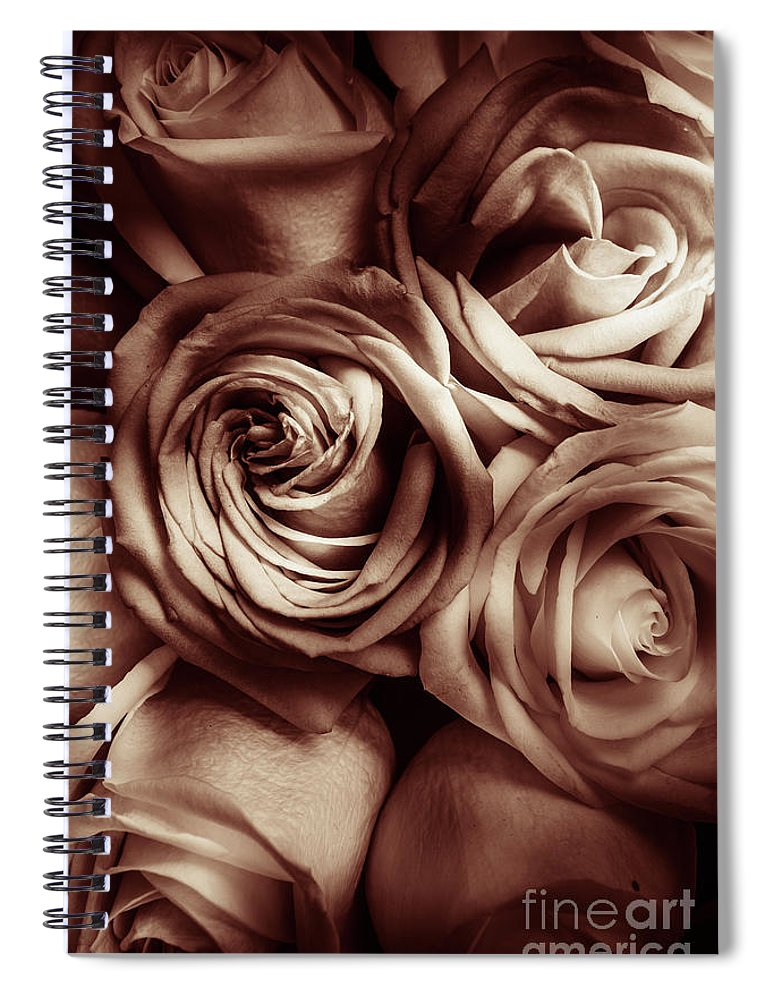 Classical Spiral Notebook featuring the photograph Rose Carmine by Jorgo Photography - Wall Art Gallery