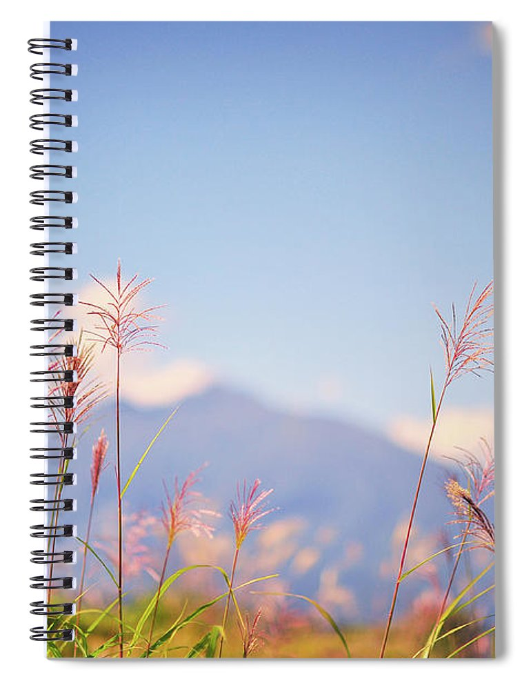 Scenics Spiral Notebook featuring the photograph Rushes by Photo By Glenn Waters In Japan