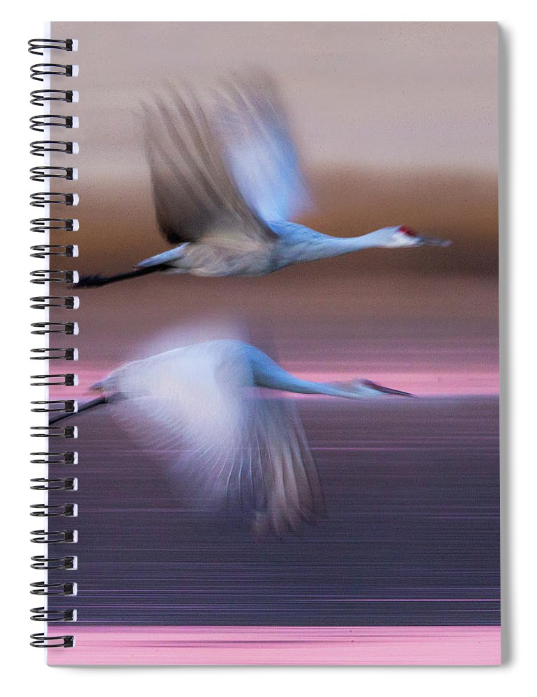 Photography Spiral Notebook featuring the photograph Sandhill Cranes Flying Over Lake by Panoramic Images