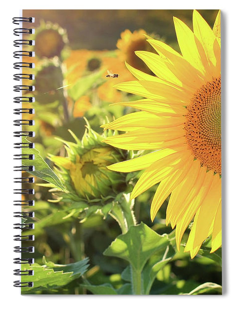 Sunflower Spiral Notebook featuring the photograph Save The Bees by Martina Schneeberg-Chrisien