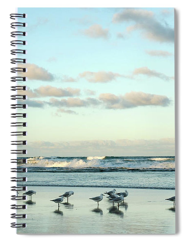 Working Spiral Notebook featuring the photograph Seagulls In Heaven V2 by Breecedownunder