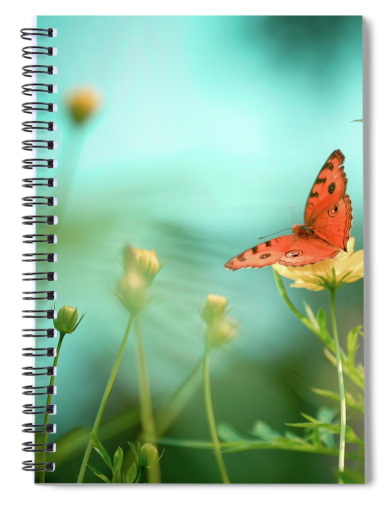 Animal Themes Spiral Notebook featuring the photograph She Rests In Beauty by Patricia Ramos