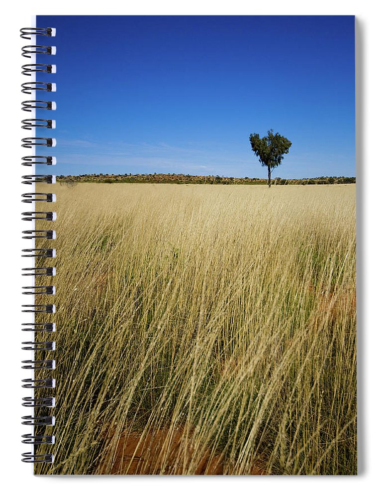 Scenics Spiral Notebook featuring the photograph Small Single Tree In Field by Universal Stopping Point Photography