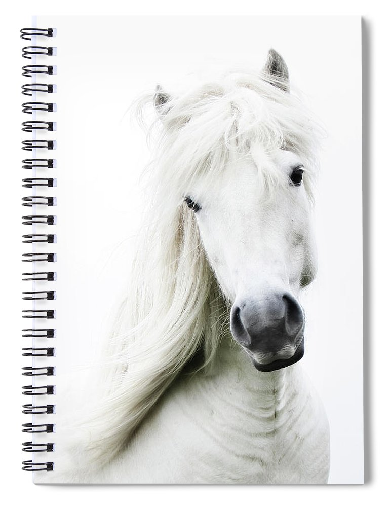 Horse Spiral Notebook featuring the photograph Snowhite by Gigja Einarsdottir