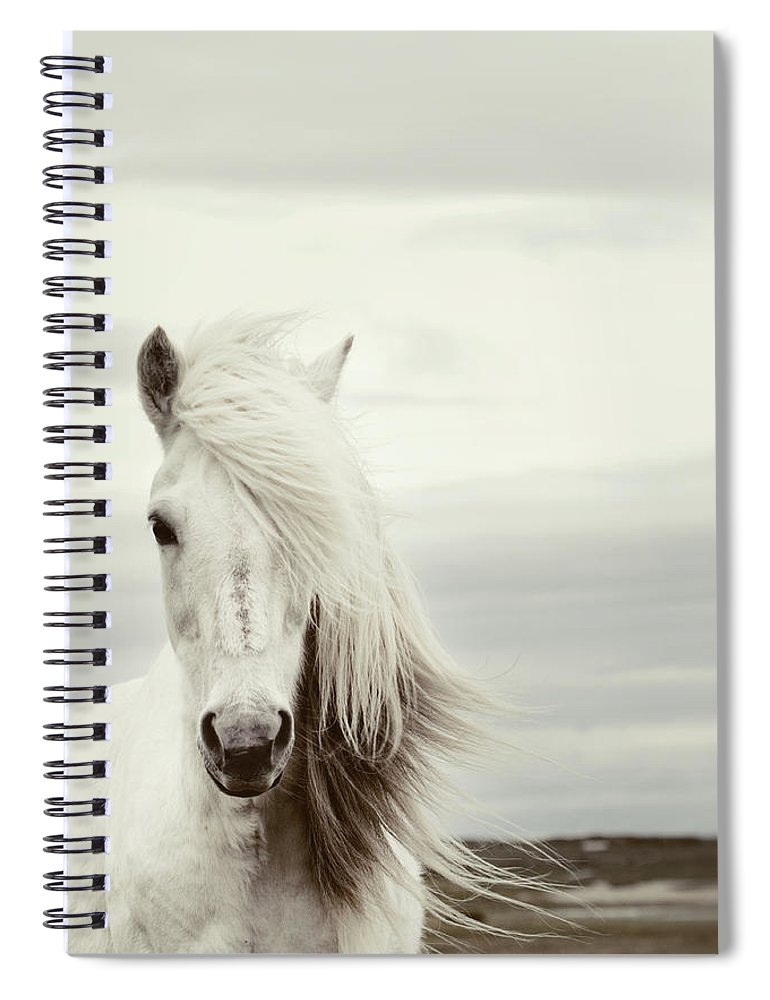 Horse Spiral Notebook featuring the photograph ísold by Gigja Einarsdottir
