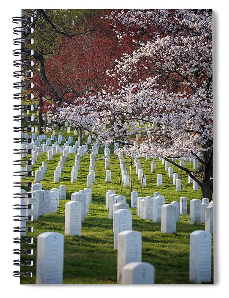 Blossoms Spiral Notebook featuring the photograph Spring at Arlington by Fred DeSousa