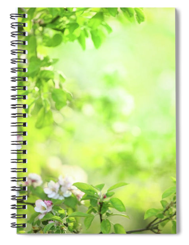 Grass Spiral Notebook featuring the photograph Spring Flowers Blooming Orchard - by Konradlew