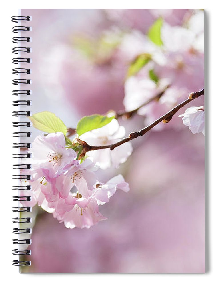 People Spiral Notebook featuring the photograph Spring by Goldhafen