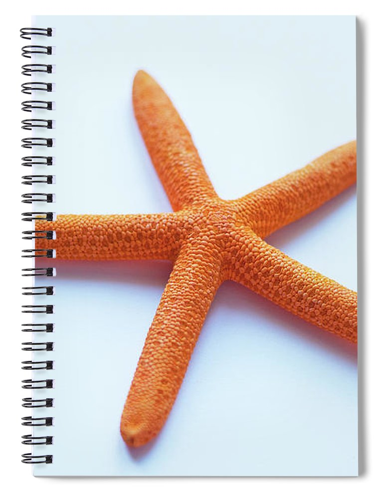 Orange Color Spiral Notebook featuring the photograph Starfish by Copyright Mcbargados
