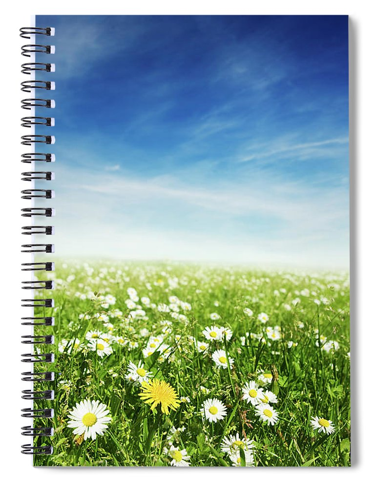 Scenics Spiral Notebook featuring the photograph Summer Meadow by Sykkel