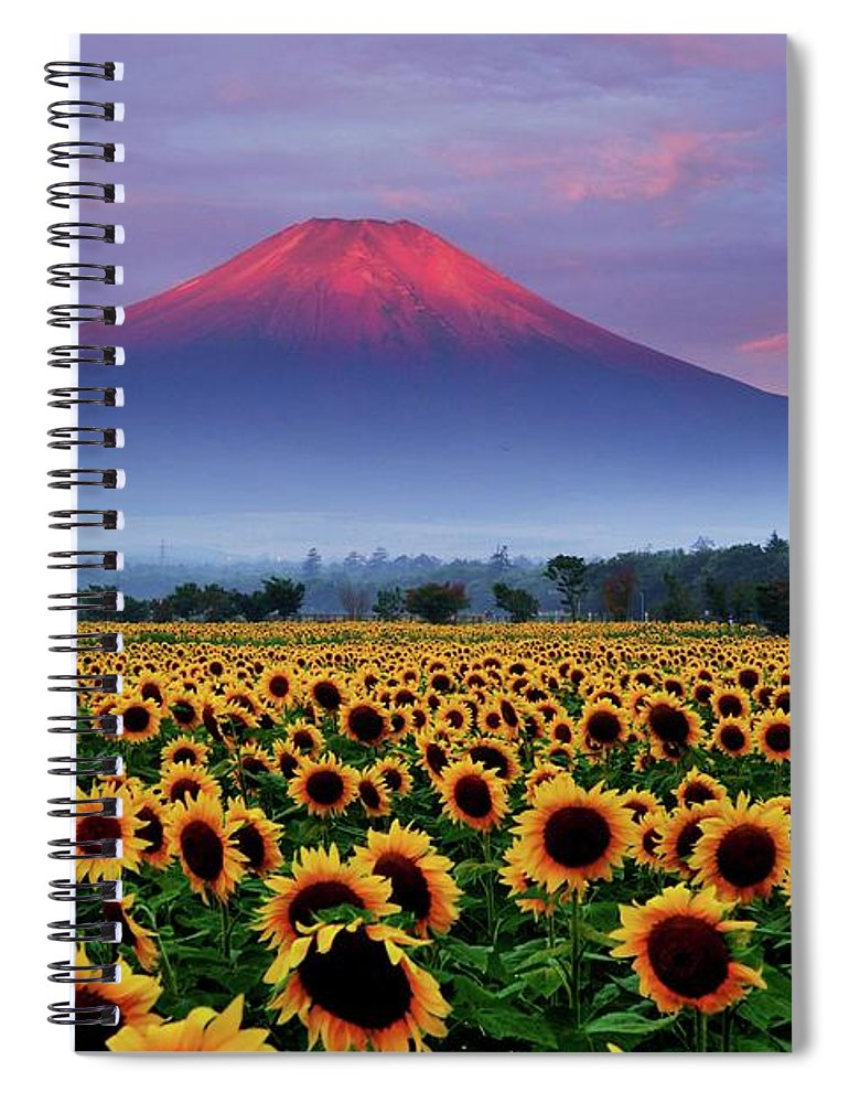 Tranquility Spiral Notebook featuring the photograph Sunflower And Red Fuji by Katsumi.takahashi