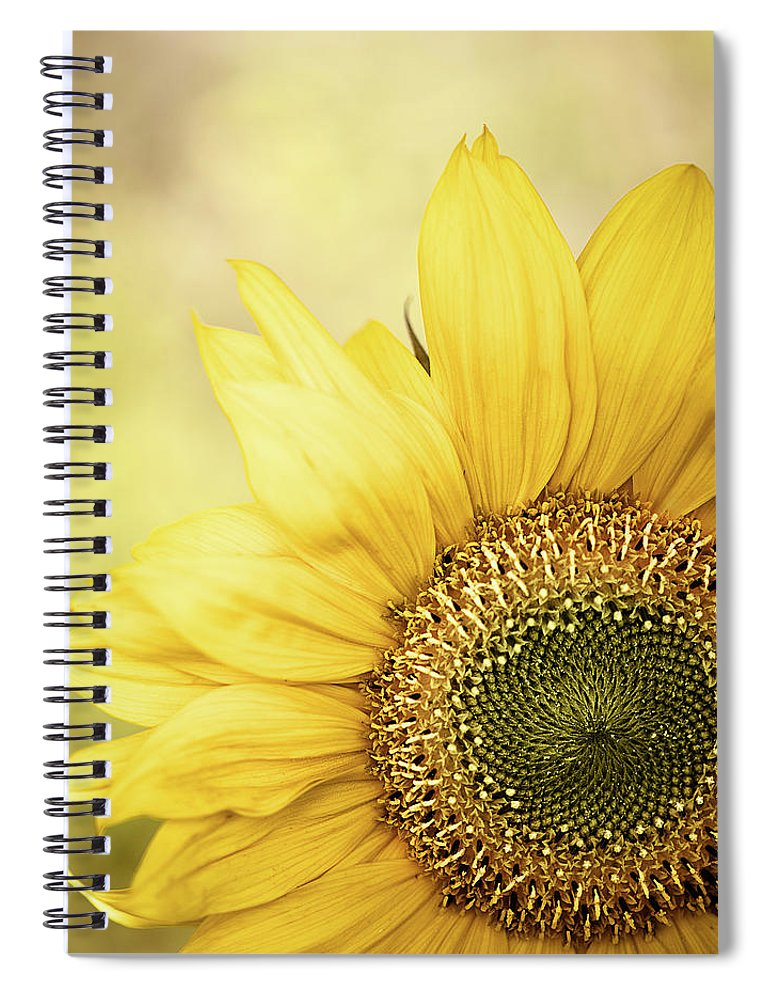 Outdoors Spiral Notebook featuring the photograph Sunflower Blossom With Bokeh Background by Elisabeth Schmitt