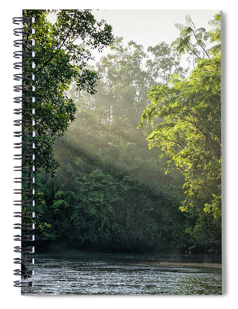 Tropical Rainforest Spiral Notebook featuring the photograph Sunlight Shining Through Trees On River by Brasil2