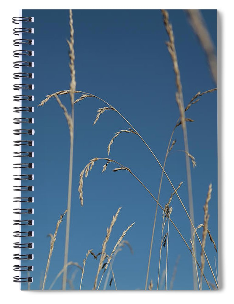 Tranquility Spiral Notebook featuring the photograph Tall Grasses Swaying Against A Blue Sky by Lauren Krohn