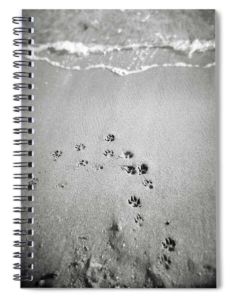Pets Spiral Notebook featuring the photograph The Beach by Moaan