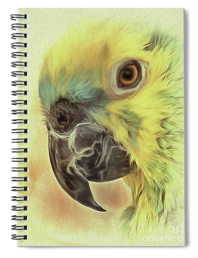 Parrot Spiral Notebook featuring the photograph The Parrot Sketch by Leigh Kemp