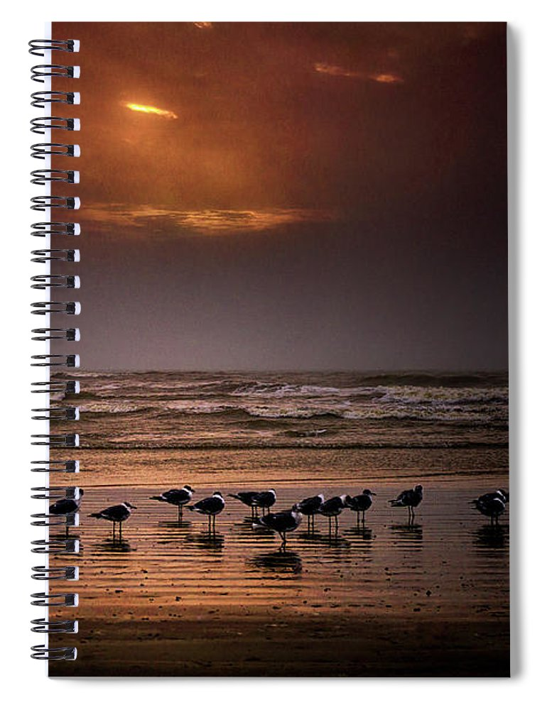 Water's Edge Spiral Notebook featuring the photograph Theres Gotta Be Food Around Here by Dean Fikar