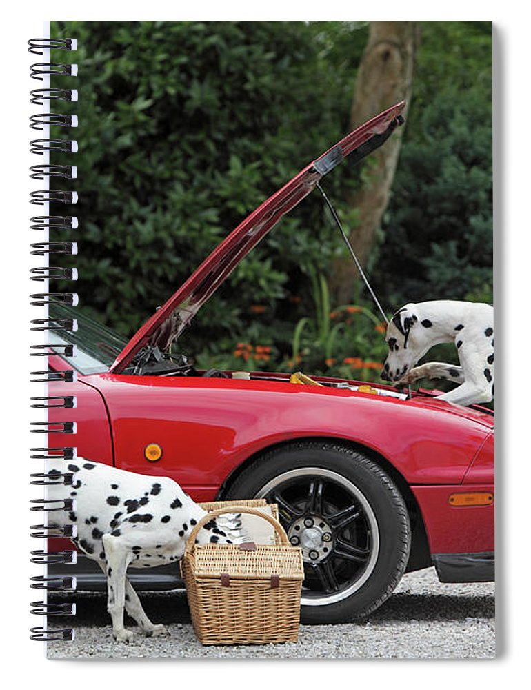 Pets Spiral Notebook featuring the photograph Three Dalmatians Around Red Sports Car by Peter Cade