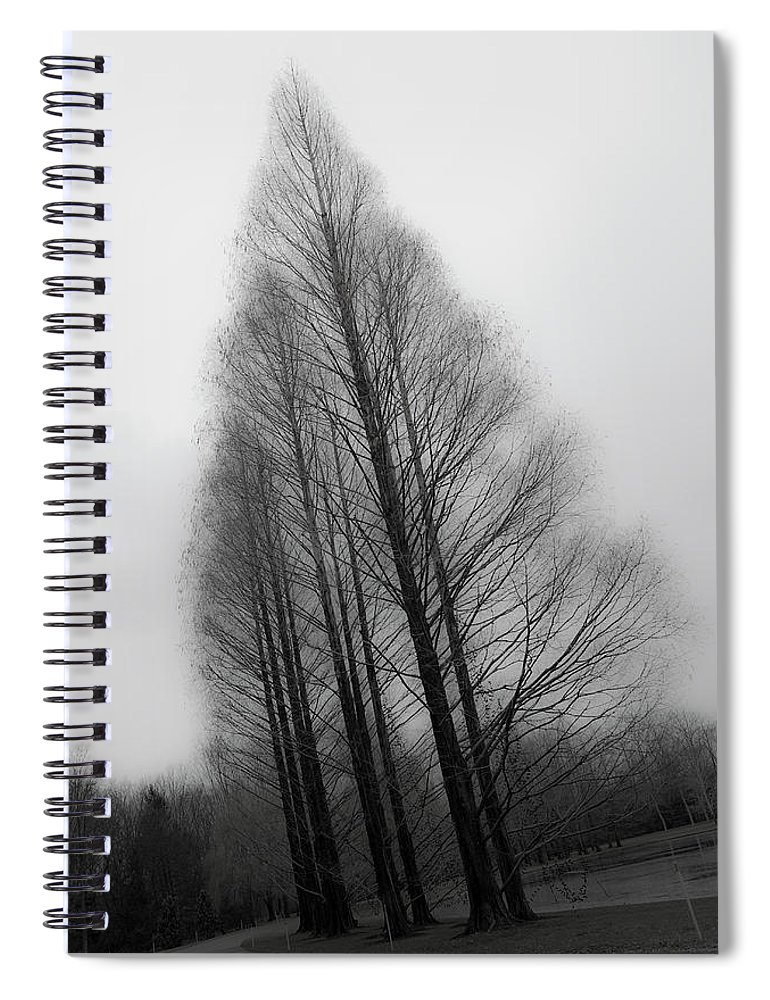 Tranquility Spiral Notebook featuring the photograph Trees In Winter Without Leaves by Marie Hickman