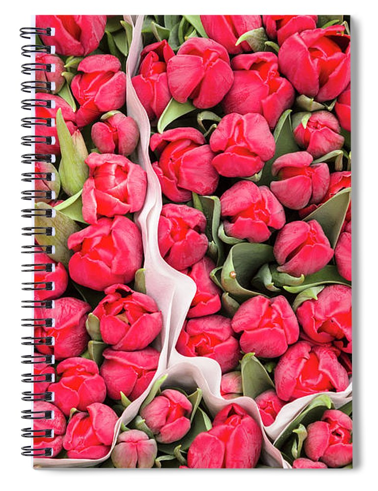 North Holland Spiral Notebook featuring the photograph Tulips For Sale At A Flower Market by P A Thompson