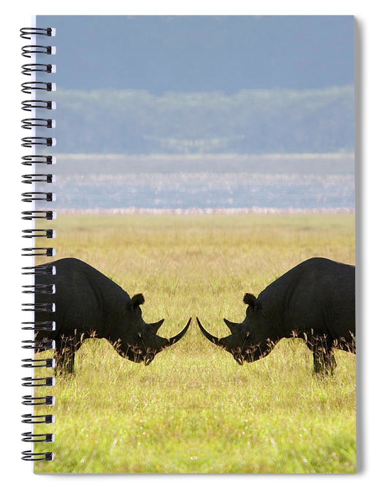 Animal Themes Spiral Notebook featuring the photograph Two White Rhinoceros Face To Face On by Grant Faint