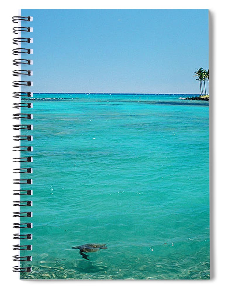 Water's Edge Spiral Notebook featuring the photograph Underwater Turtle In Maui Hawaii Resort by Ejs9