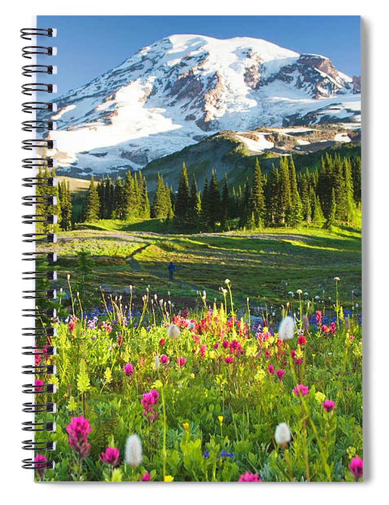 Scenics Spiral Notebook featuring the photograph Usa, Washington, Mt. Rainier National by Rene Frederick
