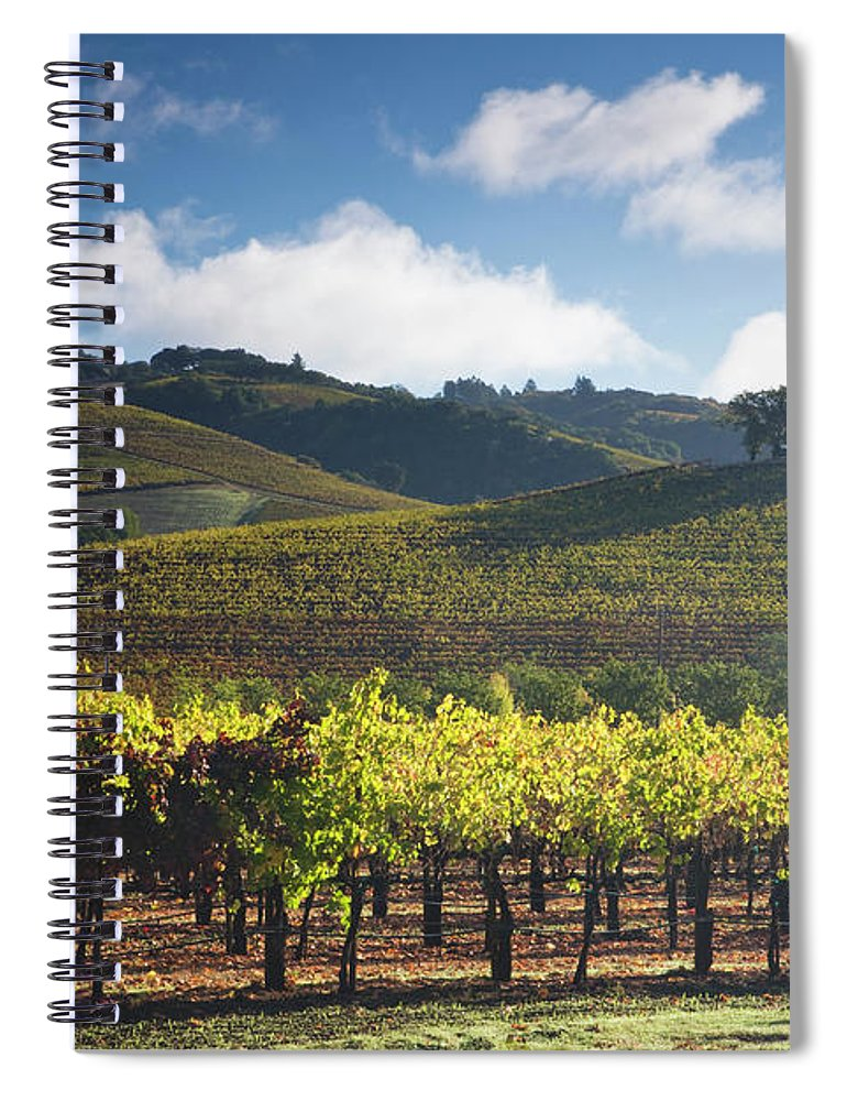 Sonoma County Spiral Notebook featuring the photograph Vineyards Autumn Time In Sonoma Valley by Darrell Gulin