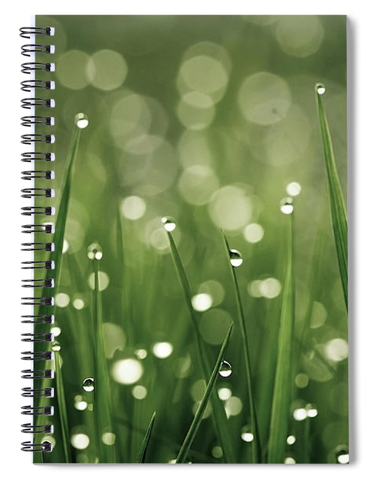 Grass Spiral Notebook featuring the photograph Water Drops On Grass by Florence Barreau