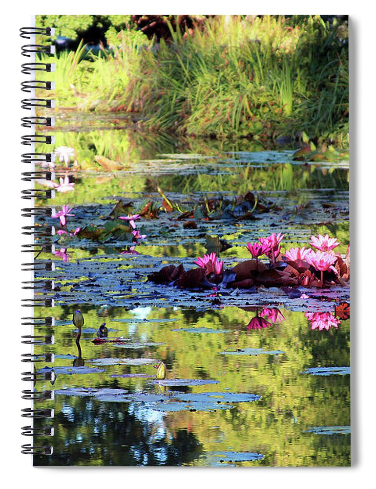 Garden Pond Spiral Notebook featuring the photograph Water Lilies in Sunlight by John Lautermilch