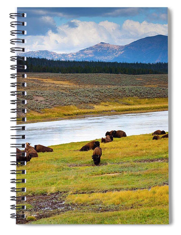 Scenics Spiral Notebook featuring the photograph Wild Bison Roam Free Beneath Mountains by Jamesbrey