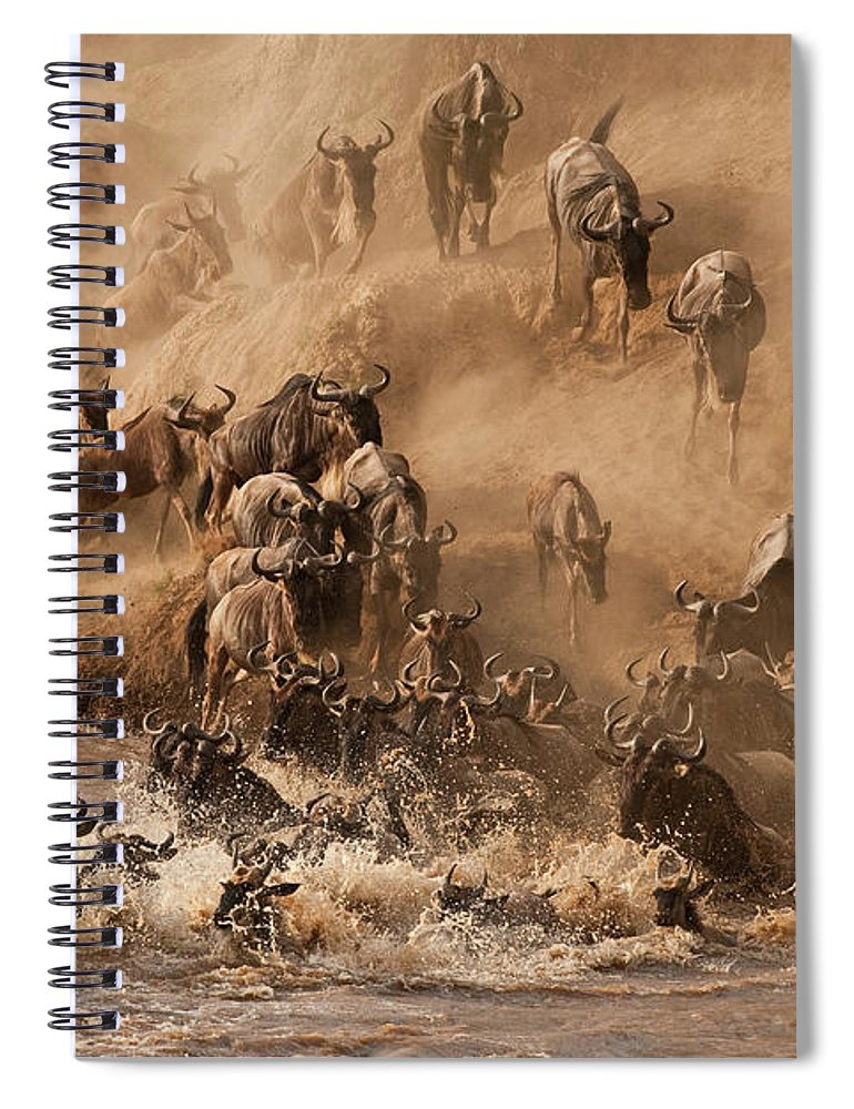 Horned Spiral Notebook featuring the photograph Wildebeest And Zebra by Marsch1962uk
