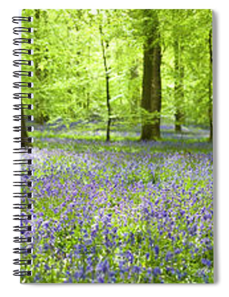 Scenics Spiral Notebook featuring the photograph Wonderful Woodland by Pkfawcett