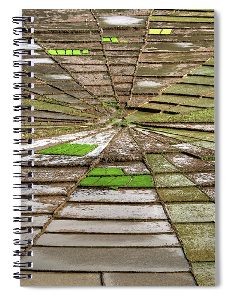 Working Spiral Notebook featuring the photograph Working The Spiderwebs by Photo ©tan Yilmaz